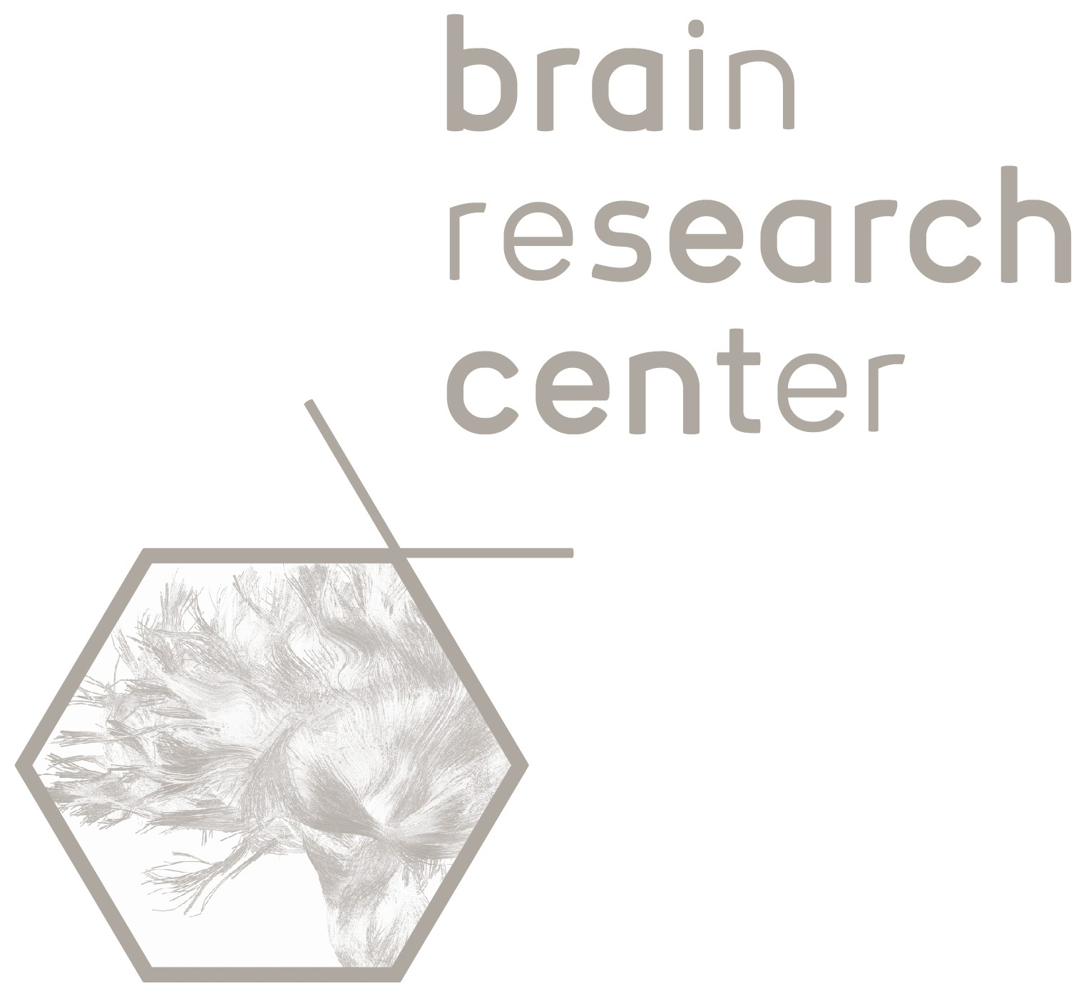 Brain Research Center